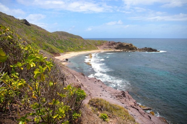 Anse Baraban, one of the forbidden beaches inside Martinique's Caravelle Peninsula | SBPR