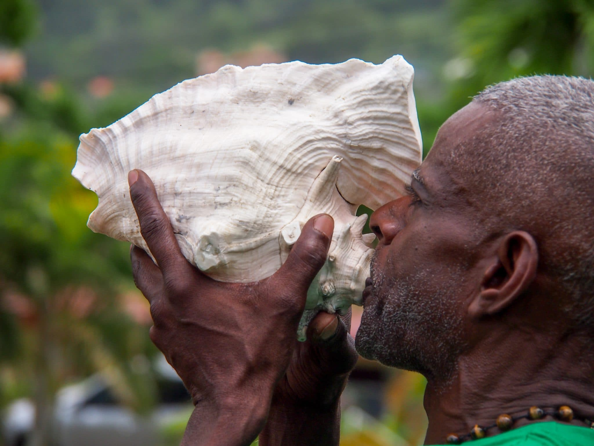 How To Blow a Conch Shell, Part One